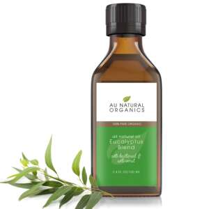 Eucalyptus Blend Oil – 100ml1