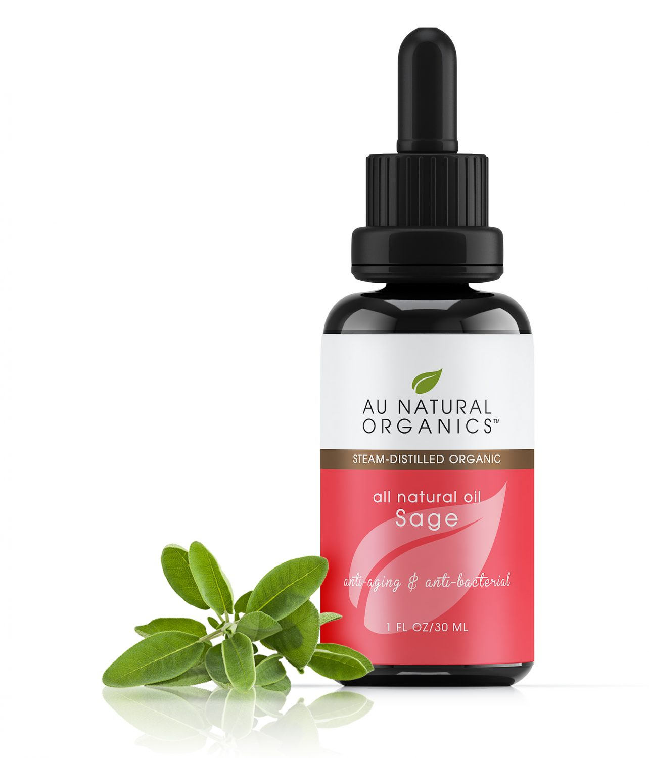 sage essential oil - sage oil