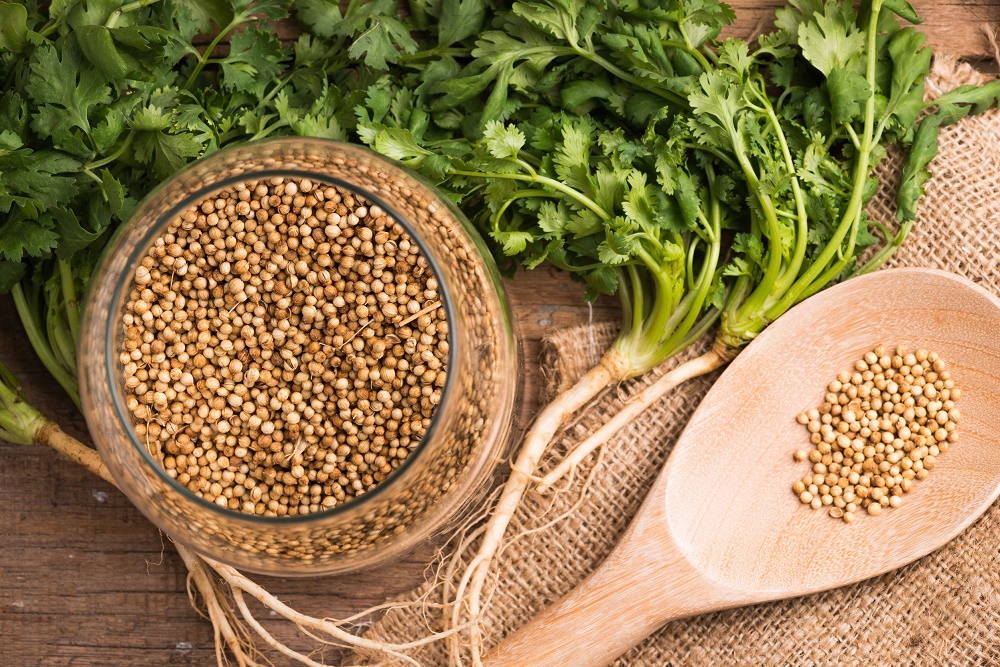 The Wonder that is Coriander